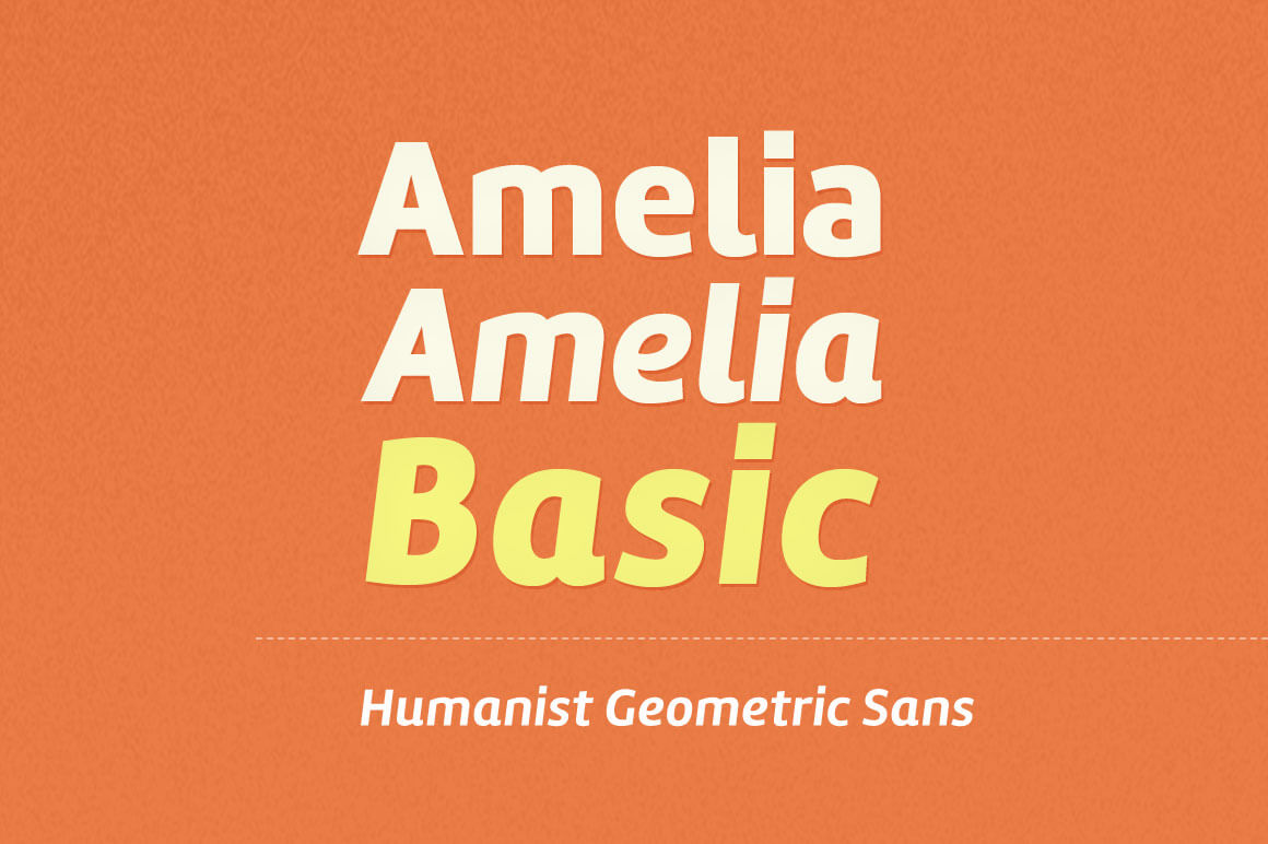 Amelia Basic Font from Tipotype (12 different styles) - only $12!