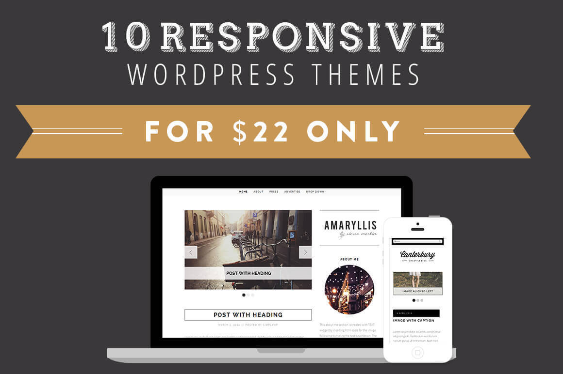 10 Responsive WordPress Themes from SimplyWP - only $22!