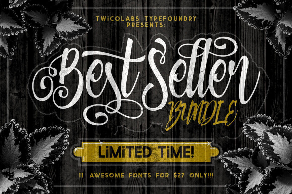 Get these 11 Best-Selling Fonts from Twicolabs - only $27!