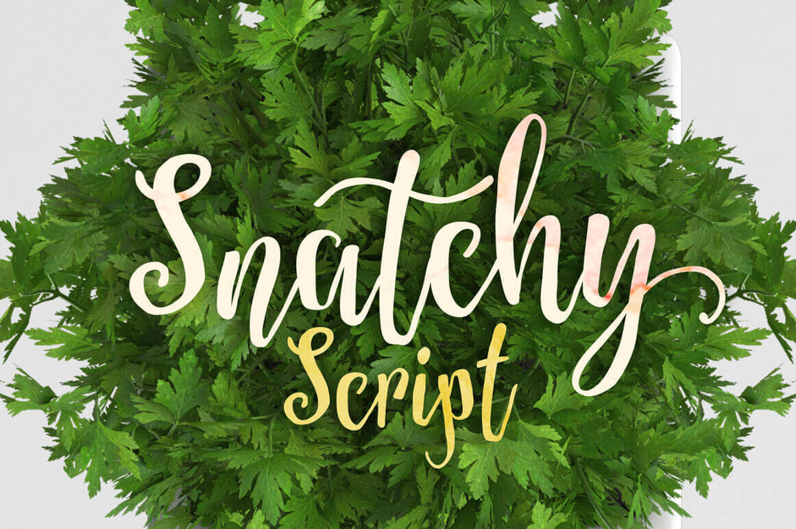 Snatchy Script Font: A Beautiful Script Font with a Natural Feel - only 7!