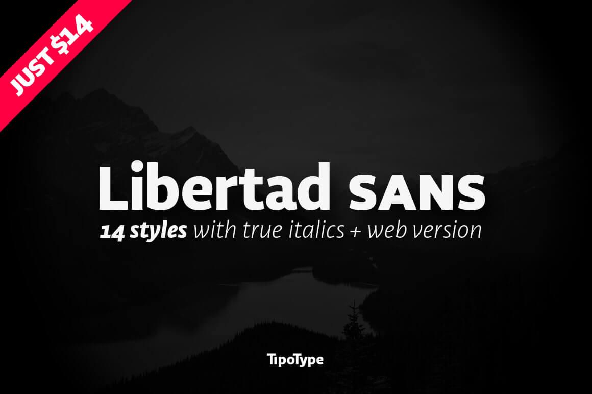 Libertad, 14 Unique Fonts in 1 Versatile Sans-Serif Font - only $14!