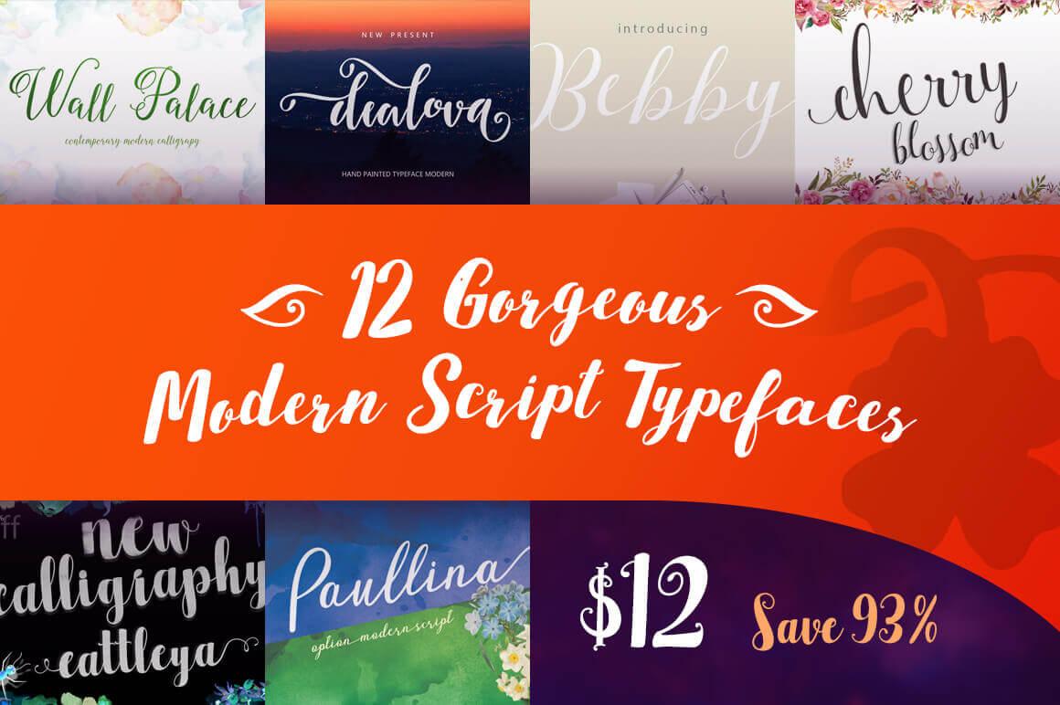 12 Gorgeous Modern Script Typefaces  - $12!