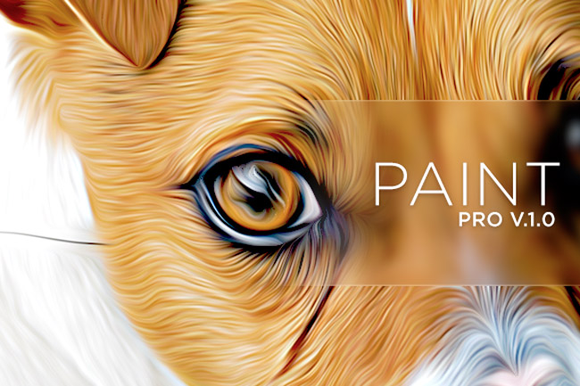 Oil paint effect in pixel bender plugin for photoshop cs6 for Paint pros