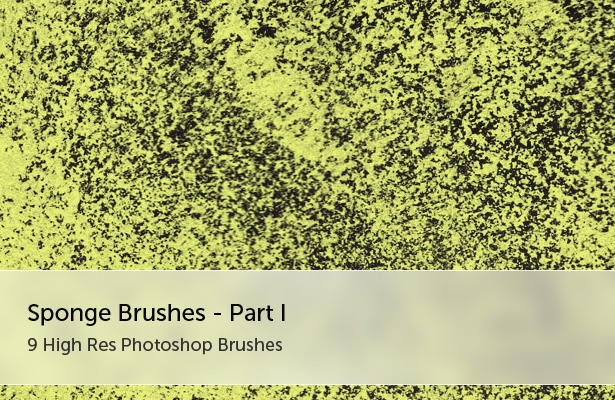 Sponges Brushes - Part I