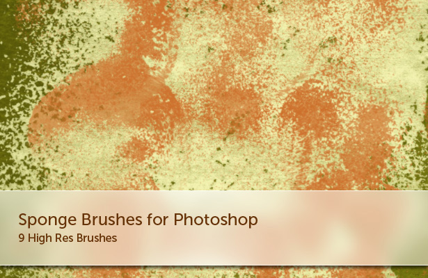 Sponges Brushes - Part II
