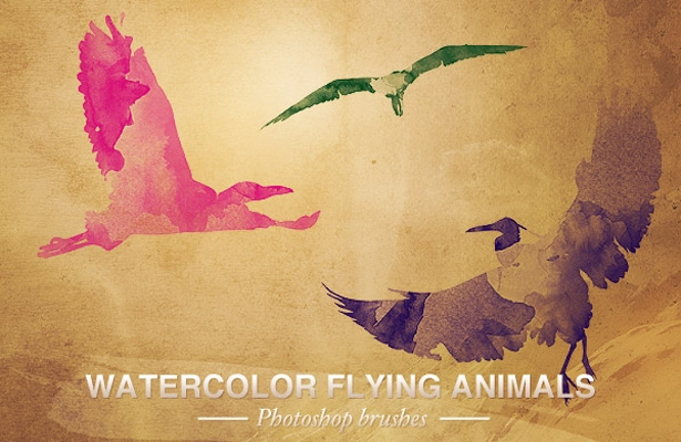 Watercolor Flying Animals Brushes