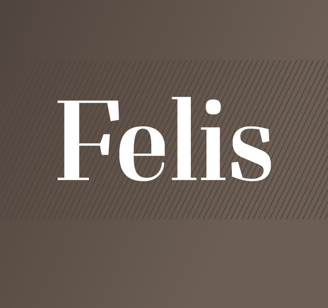 Typomancer's Complete Felis Font Family - Slab Serif, Didone - only $20!
