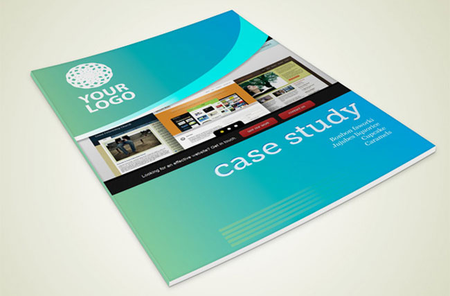 Blue Case Study Book